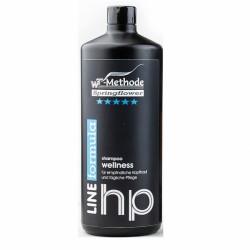 Wellness Shampoo - Шампунь для чувствительной кожи головы и для ежедневного ухода 1000 мл